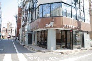 東京猫医療センター